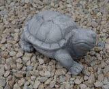 199 schildpad klein