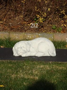 212 slapende hond