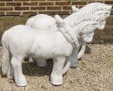 Z98 paard