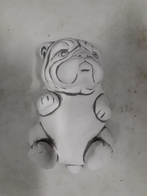 Z203 engelse bulldog pup op rug