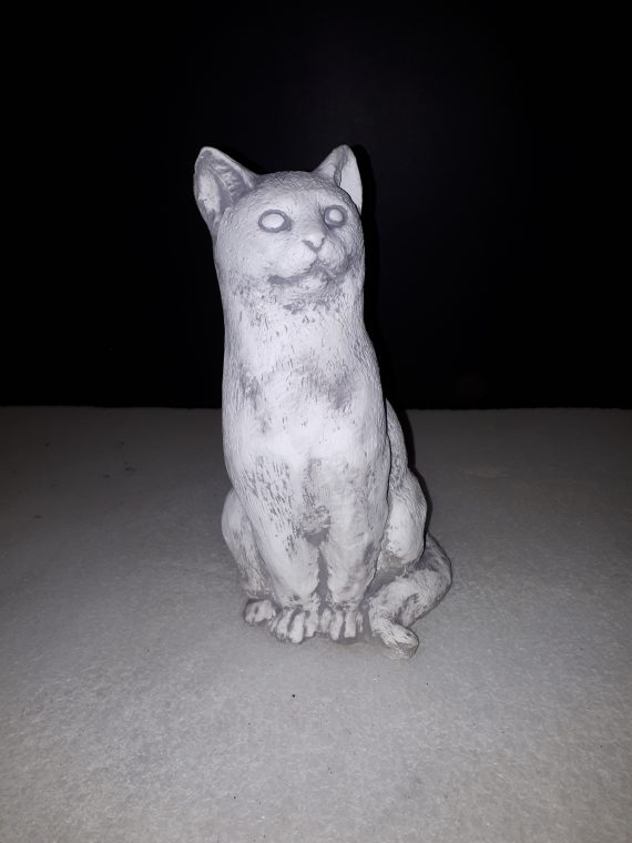 393 klein katje zittend