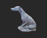 H1029 whippet - windhond
